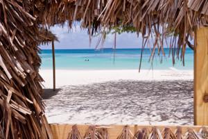 Aruba2015-93